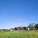 Naturstammhäuser- - Log Cabins - Feriendorf Tollensesee Gross Nemerow