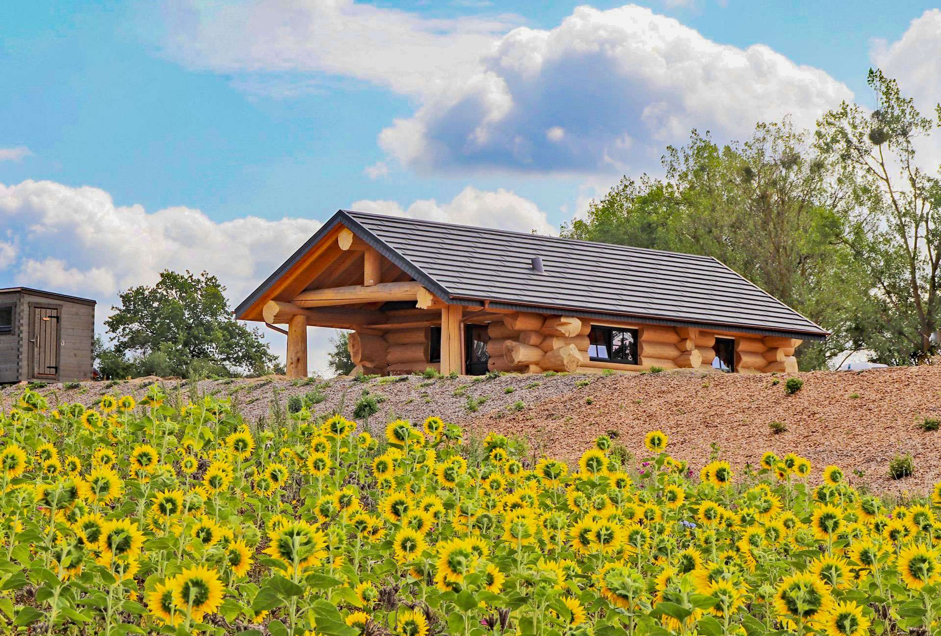 Feriendorf Tollensesee Naturstamm Ferienhäuser in der Mecklenburgischen Seenplatte